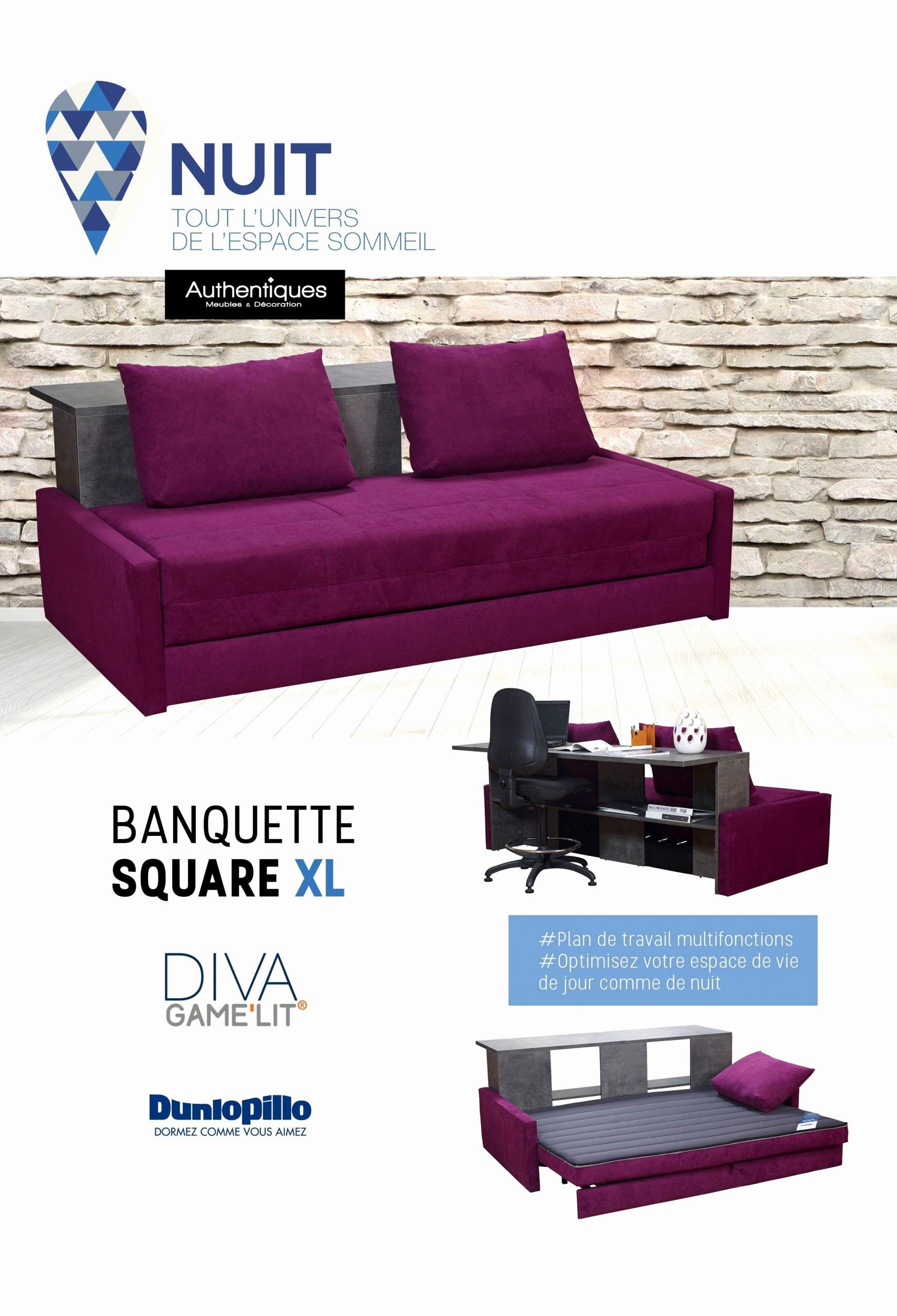 Canape Convertible Violet Le Meilleur De Banquette Lit