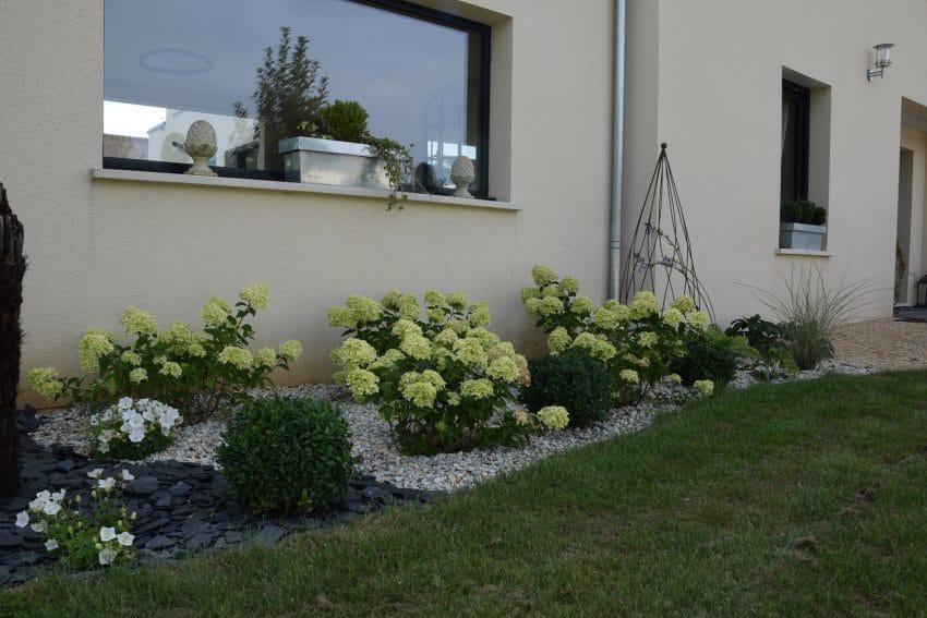 Plante pour jardin Aménagement de jardin