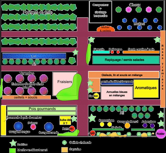 Exemples de plans de potager et de contenus de potager