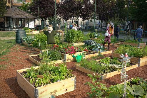 Planifier son jardin potager Famiflora