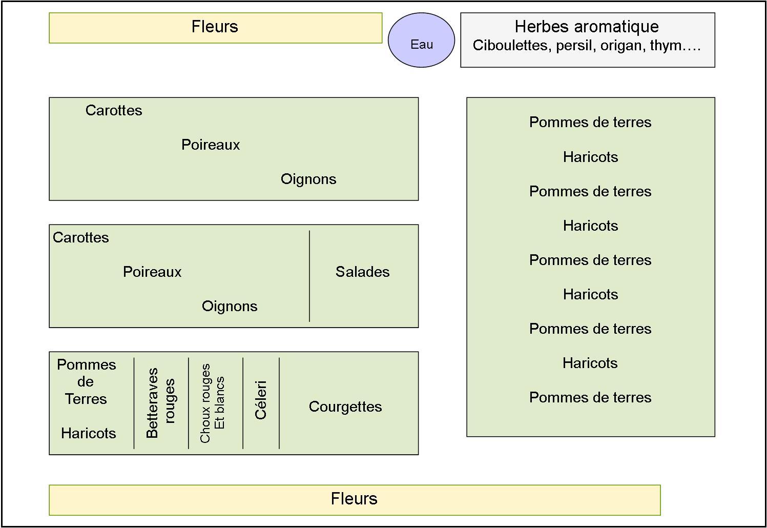 Un plan de potager Bio association et rotation des cultures