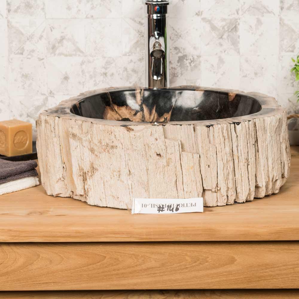 Double vasques de salle de bain en bois pétrifié fossilisé