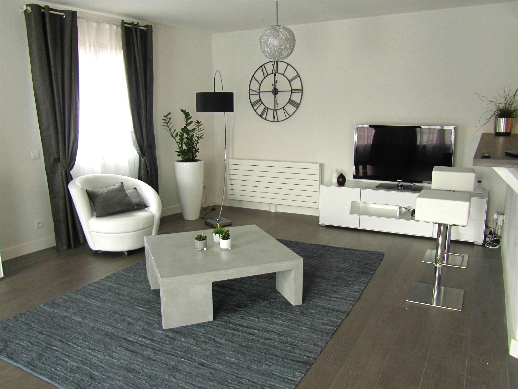 Idee Deco Salon Noir Gris Blanc Avec Decoration Salon