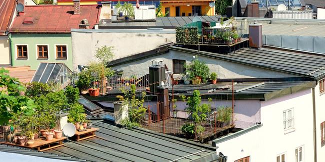 Toit terrasse avantages inconvénients idées d'utilisation