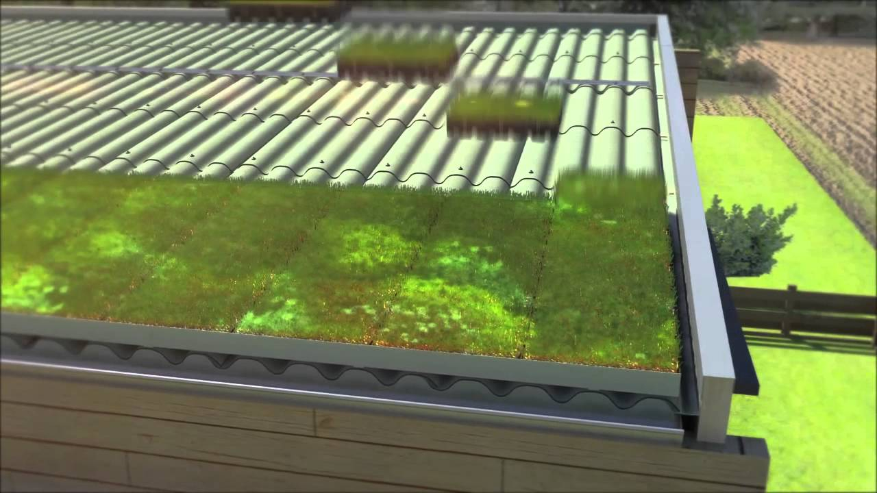 Toit Terrasse Végétalisé toiture Végétalisée Avec Hydropack Sur Système Verdura D