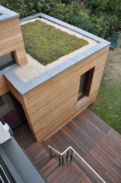 Le toit terrasse de l'extension est végétalisé