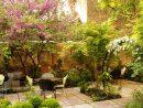 10 Choix D'arbres Pour Petits Jardins | Jardinier Conseil concernant Arbre Pour Petit Jardin