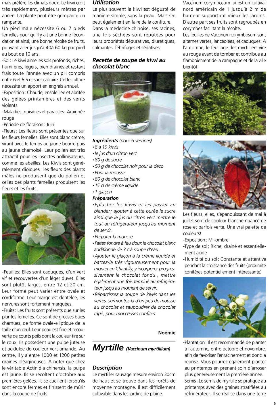6 De Haut Bassin De Leau 1000 Plantes Graines Groco Herbe ... serapportantà Plante Bassin De Jardin