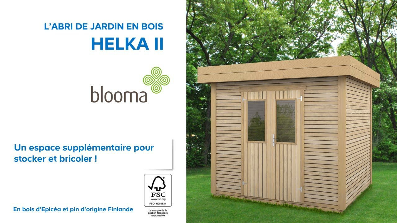 Abri De Jardin Castorama En Bois Chambre Gite Lapointeduraz ... concernant Toiture Abri De Jardin Castorama