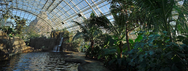 Amazon-Guyana Biozone | Parc Zoologique De Paris pour Serre De Jardin Amazon