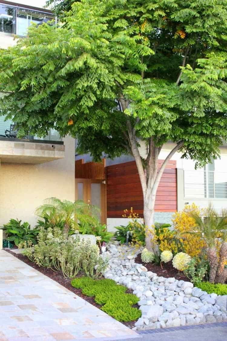 Aménagement Petit Jardin Devant La Maison – Quels Arbres ... avec Arbre Pour Petit Jardin