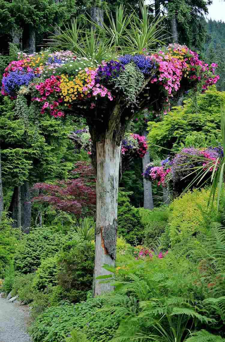 Arbre Mort, Bois Flotté Et Souche D'arbre Pour Décorer Le Jardin à Arbre Pour Petit Jardin
