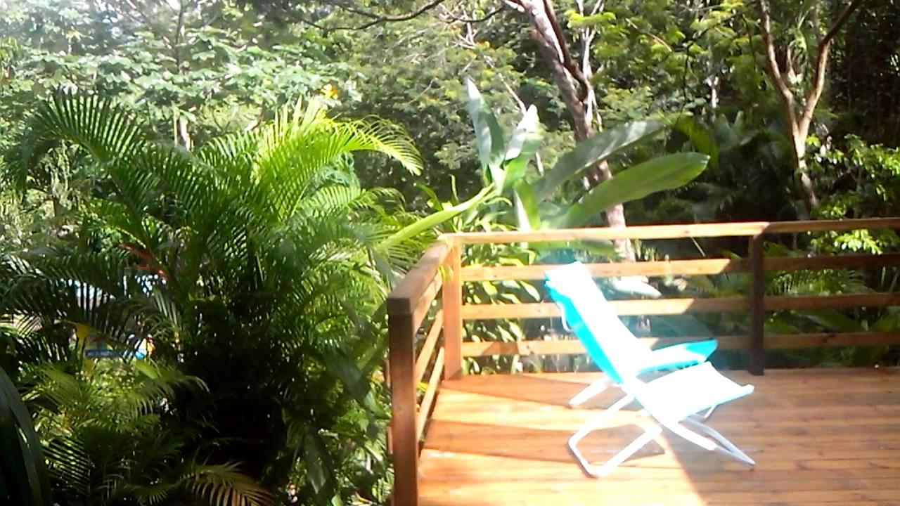 Au Jardin Des Colibris Deshaies Guadeloupe ... Gite De Charme Au Coeur De  La Nature intérieur Au Jardin Des Colibris