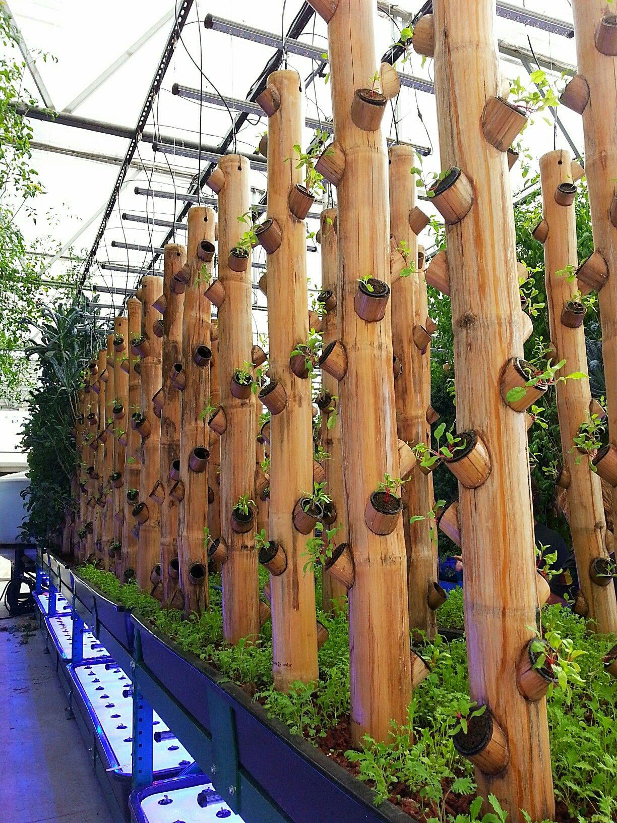 Bamboo Gardening Greenhouse … | Agriculture Urbaine ... tout Serre De Jardin Amazon