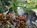 Bassin Avec Bâche Et Pierre Pourtour En Pierre Naturelle ... tout Plante Bassin De Jardin