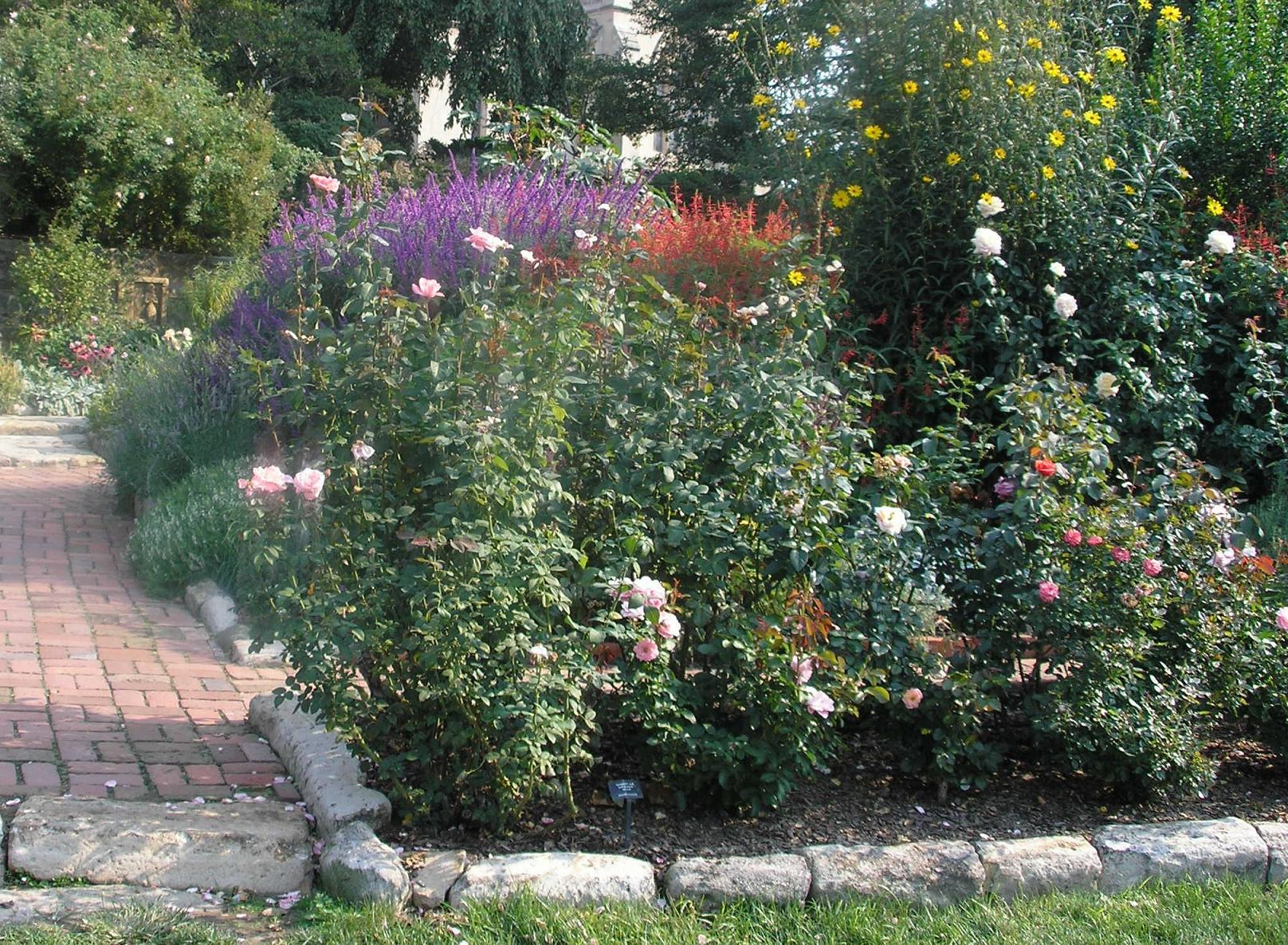 Bordure Jardin : Installer Des Bordures De Jardin | Pratique.fr à Bordure Jardin Pas Cher
