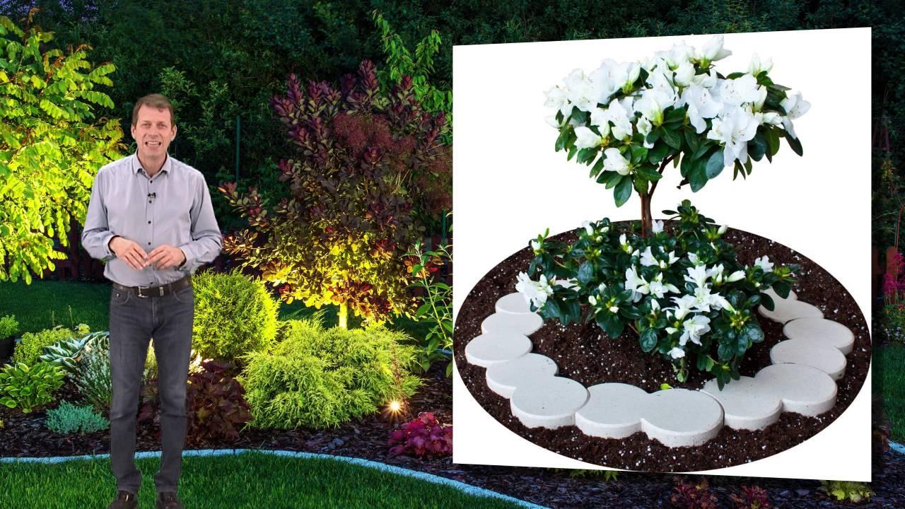 Bordure Plastique Jardin Et Terrasse concernant Delimitation Jardin