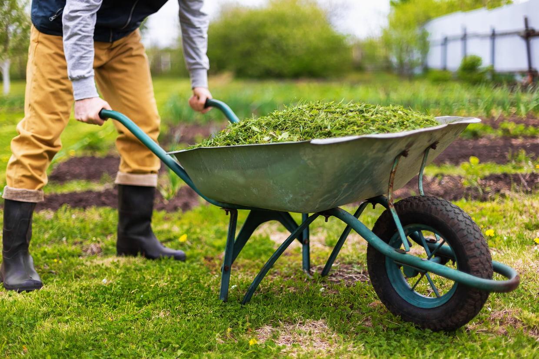 Brouette : Comment Bien Choisir Sa Brouette De Jardin, Notre ... tout Brouette Deco Jardin