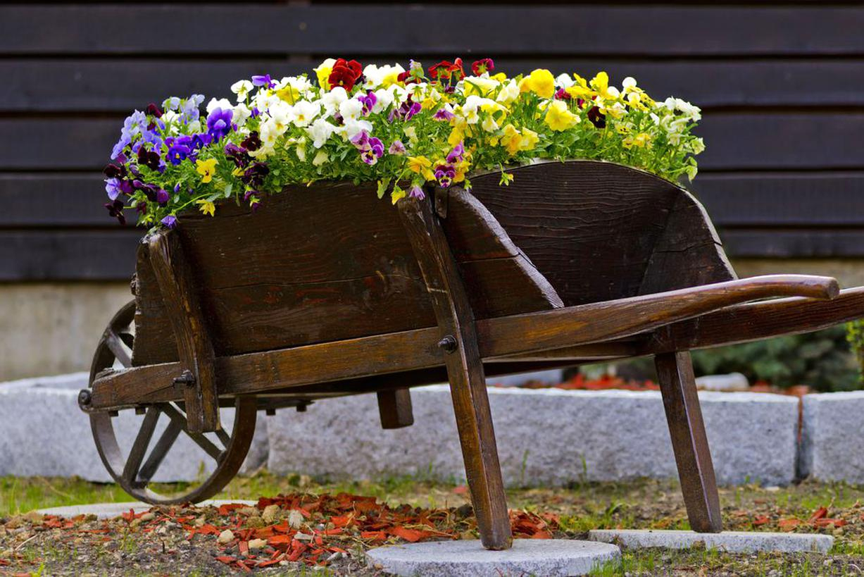 Brouette Jardin Bois D'occasion dedans Brouette Deco Jardin