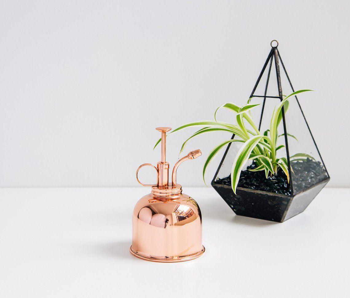 Brumisateur Cuivre Vintage Plantes D'intérieur | Brumisateur ... destiné Brumisateur Jardin