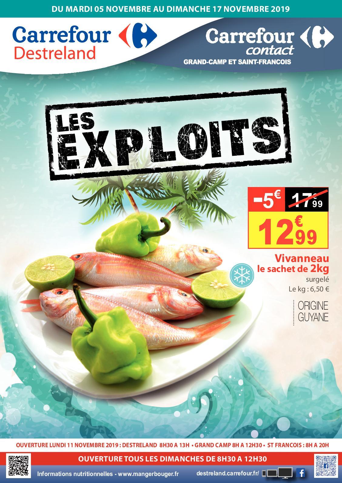 Calaméo - Catalogue Les Exploits - Novembre 2019 encequiconcerne Salon Jardin Resine Carrefour
