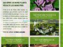 Catalogue Leclerc Du 03 Au 14 Mars 2020 (Jardin ... concernant Tondeuse Leclerc Jardin
