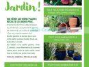 Catalogue Leclerc Local Du 10 Au 21 Mars 2020 (Saint-Aunès ... concernant Tondeuse Leclerc Jardin
