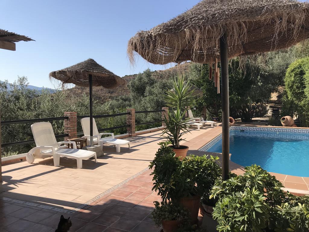 Daire Jardin Andaluz (İspanya Pinos Del Valle) - Booking intérieur Salon De Jardin Nevada