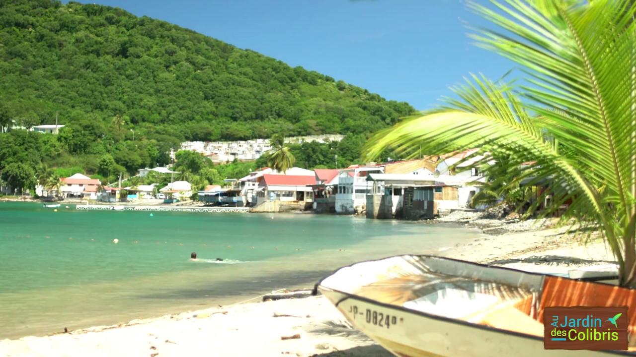 Envolez Vous Au Pays Des Colibris ! ... Au Jardin Des Colibris Deshaies  Guadeloupe dedans Au Jardin Des Colibris