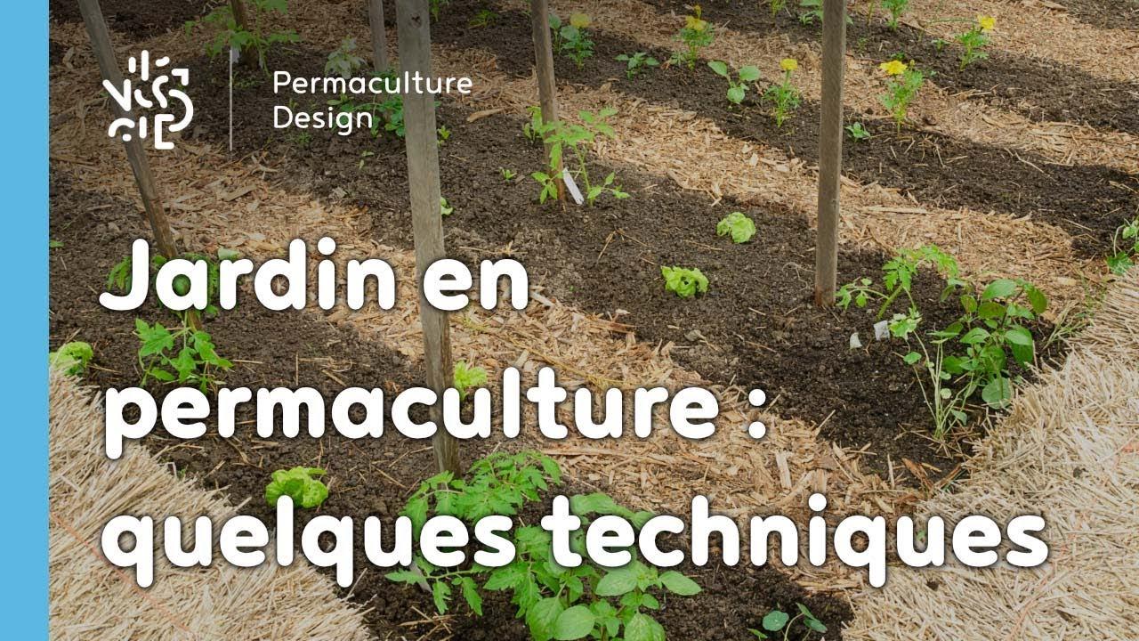 Exemple De Techniques Pour Un Jardin Potager En Permaculture avec Exemple D Aménagement De Jardin