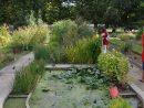 File:jardin Des Plantes - École De Botanique Paris 5E 004 ... pour Plante Bassin De Jardin