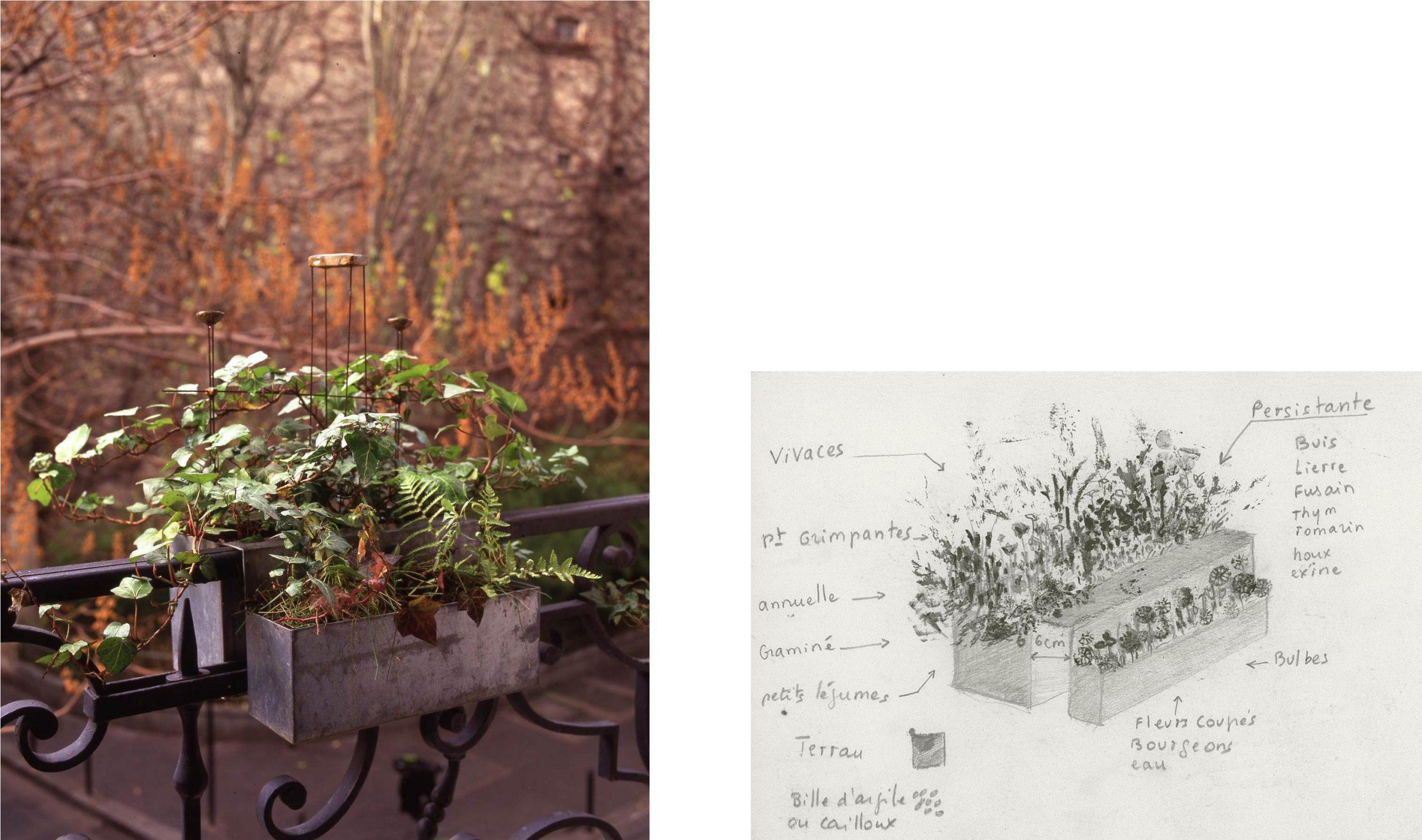 Gardens - Cécile Daladier tout Delimitation Jardin
