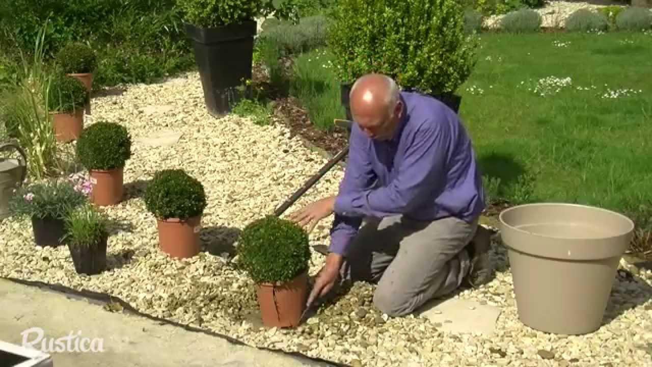 Habiller Un Gravier Avec Des Plantes pour Jardin Avec Galets Blancs
