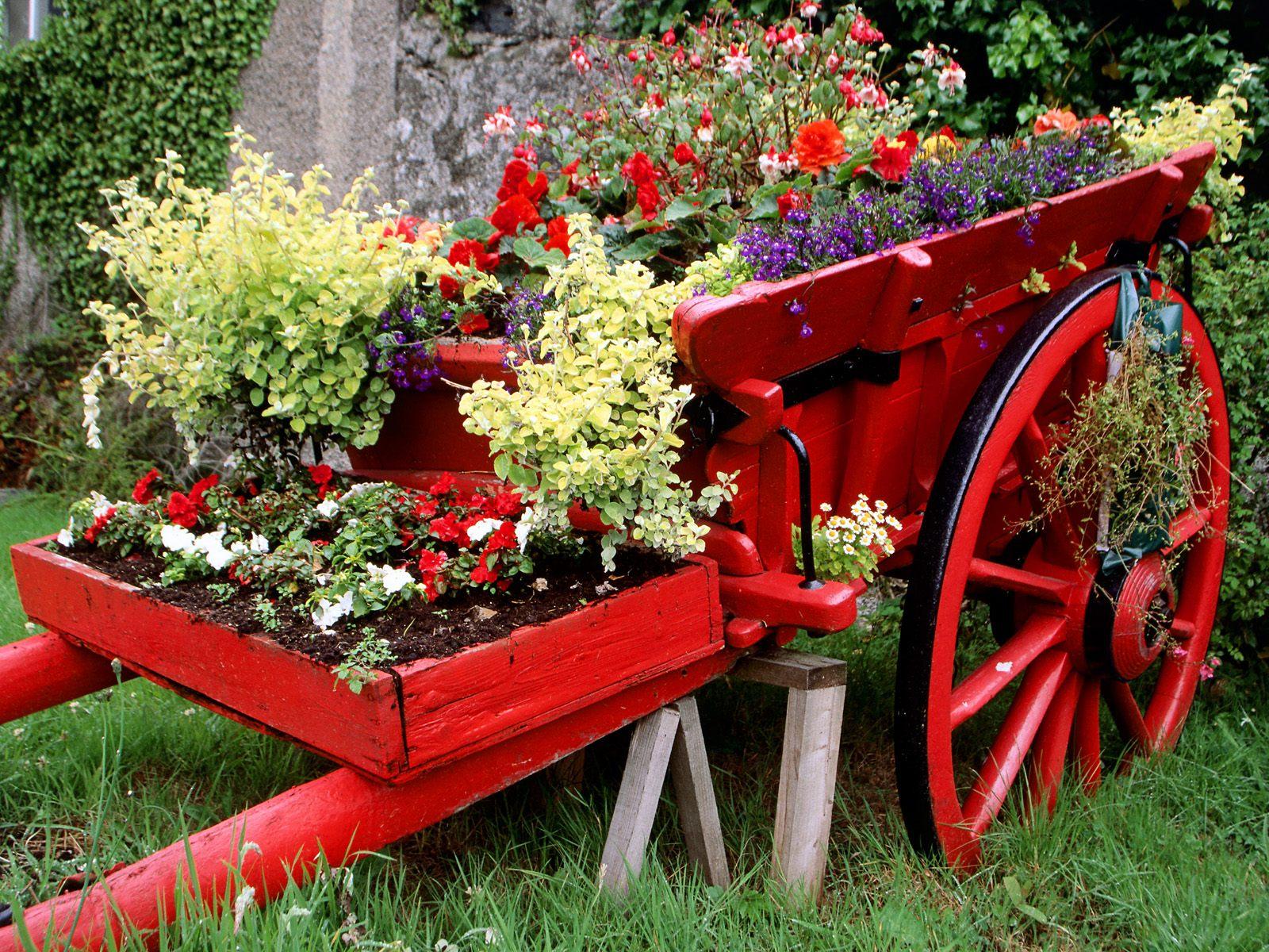 Idées De Décoration Du Jardin Avec Des Brouettes ... pour Brouette Deco Jardin