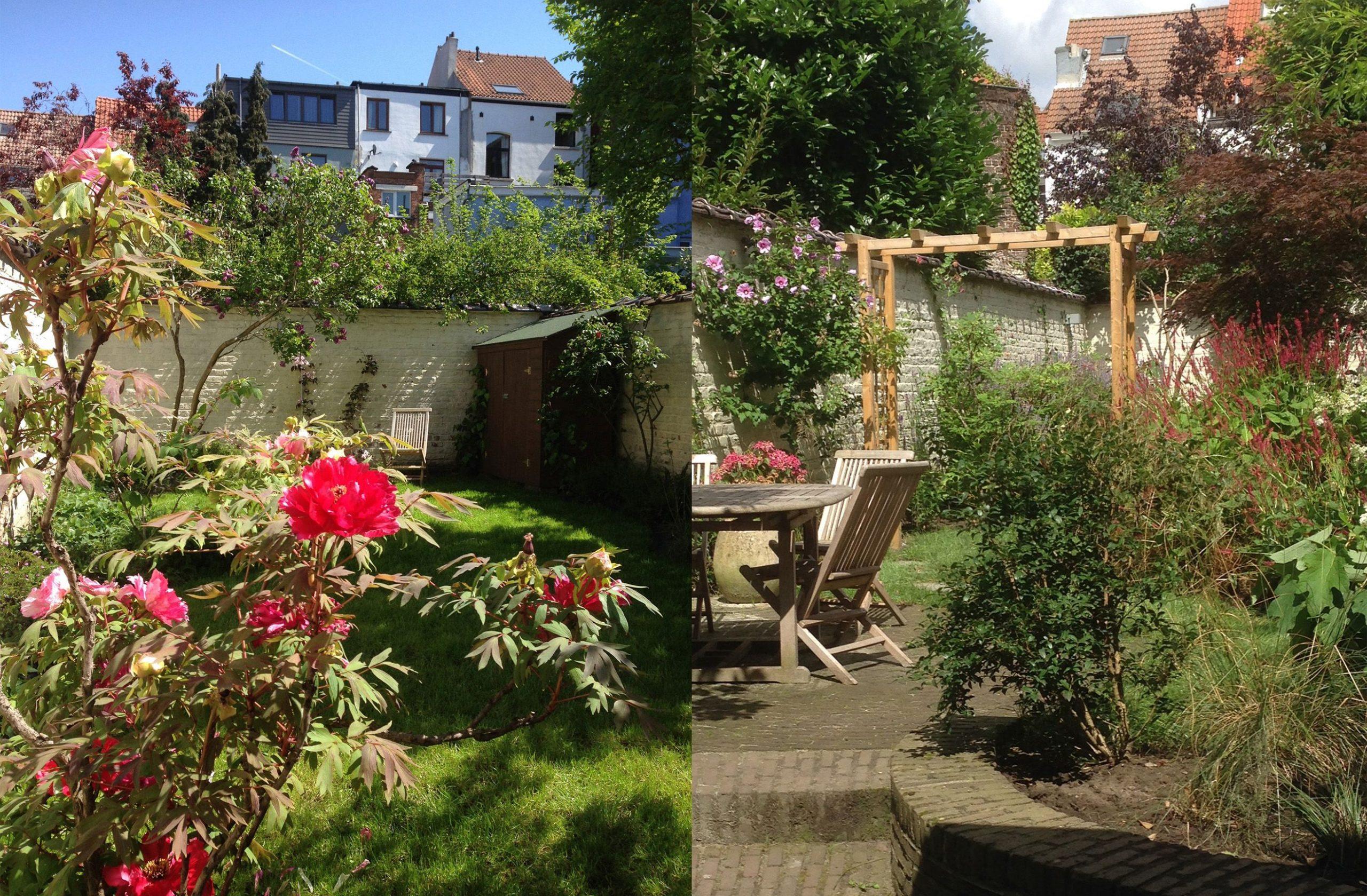 Jardin 100M2 - Bruxelles/ Marguerite Ferry - Urban Garden ... pour Arceau Jardin