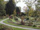 Jardin Botanique De L'université De Fribourg — Wikipédia à Arbre Pour Petit Jardin