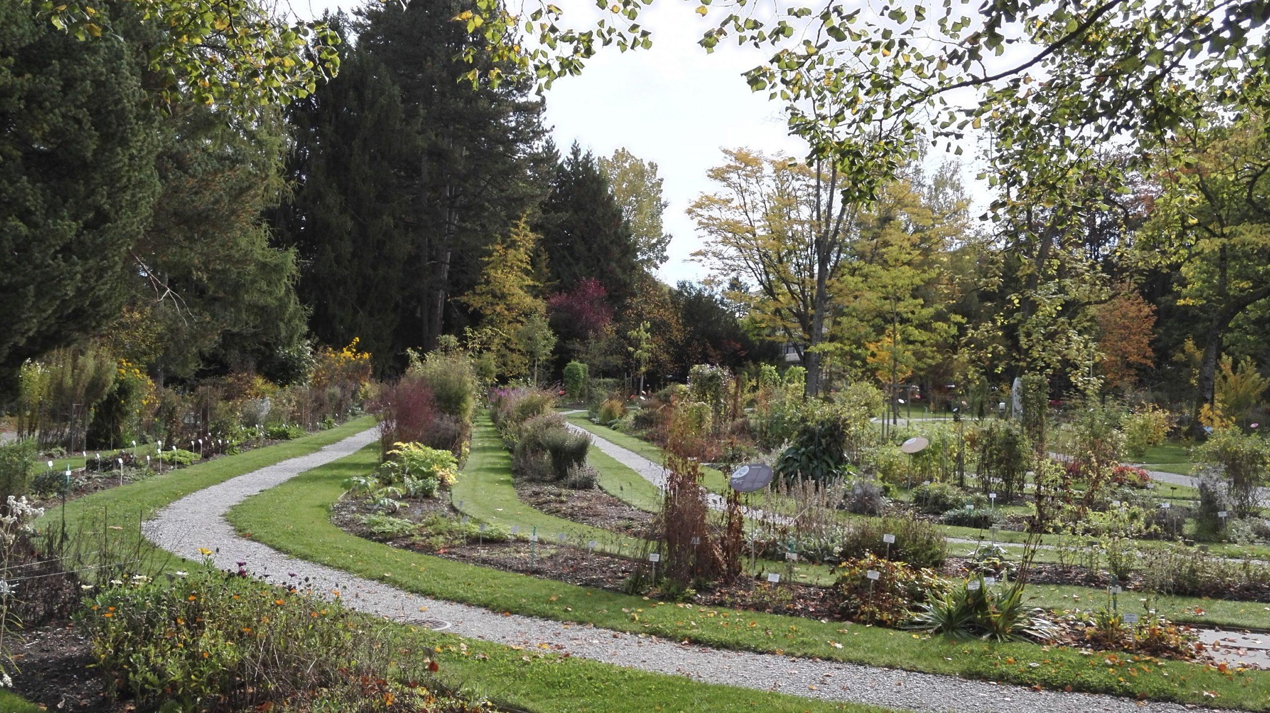 Jardin Botanique De L'université De Fribourg — Wikipédia avec Serre De Jardin D Occasion