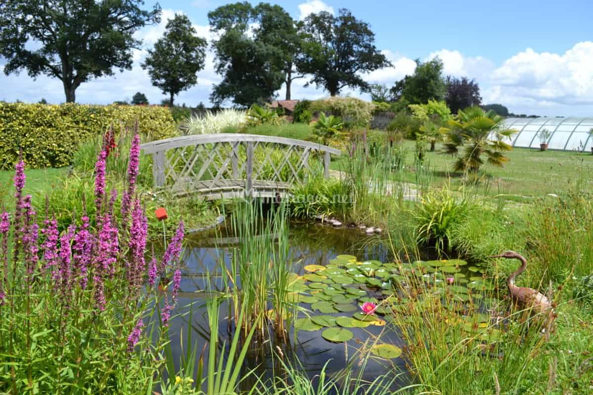 Jardin Clos, Petit Pont De Domaine De L'ecorce | Photo 14 pour Ecorces Jardin