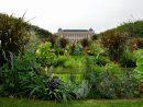 Jardin Des Plantes | Galeries, Jardins, Zoo - Jardin Des Plantes à Arbre Pour Petit Jardin