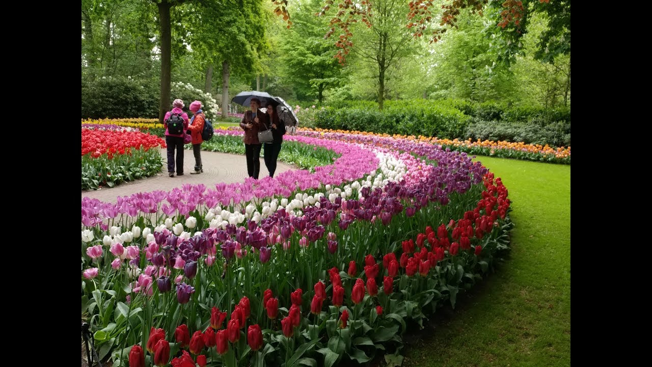 Jardin Keukenhof, Mai 2019 tout Jardin De Keukenhof