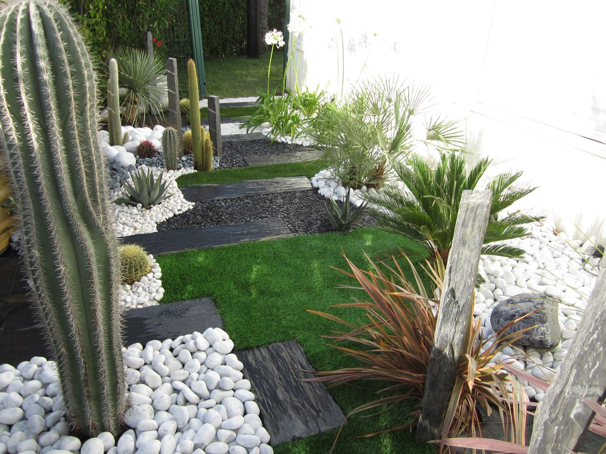 Jardin Sec: Cactus, Galets Polis Blancs, Gazon Synthétique ... dedans Jardin Avec Galets Blancs