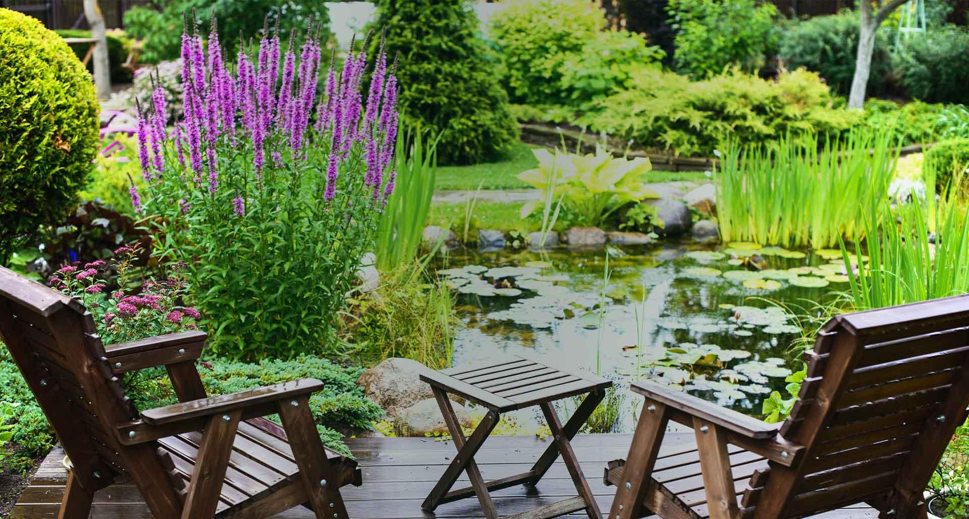 Jardineries Truffaut : Spécialiste Jardin, Animaux, Maison ... concernant Arbre Pour Petit Jardin