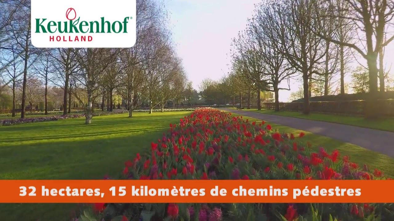 Keukenhof 2019 Français avec Jardin De Keukenhof