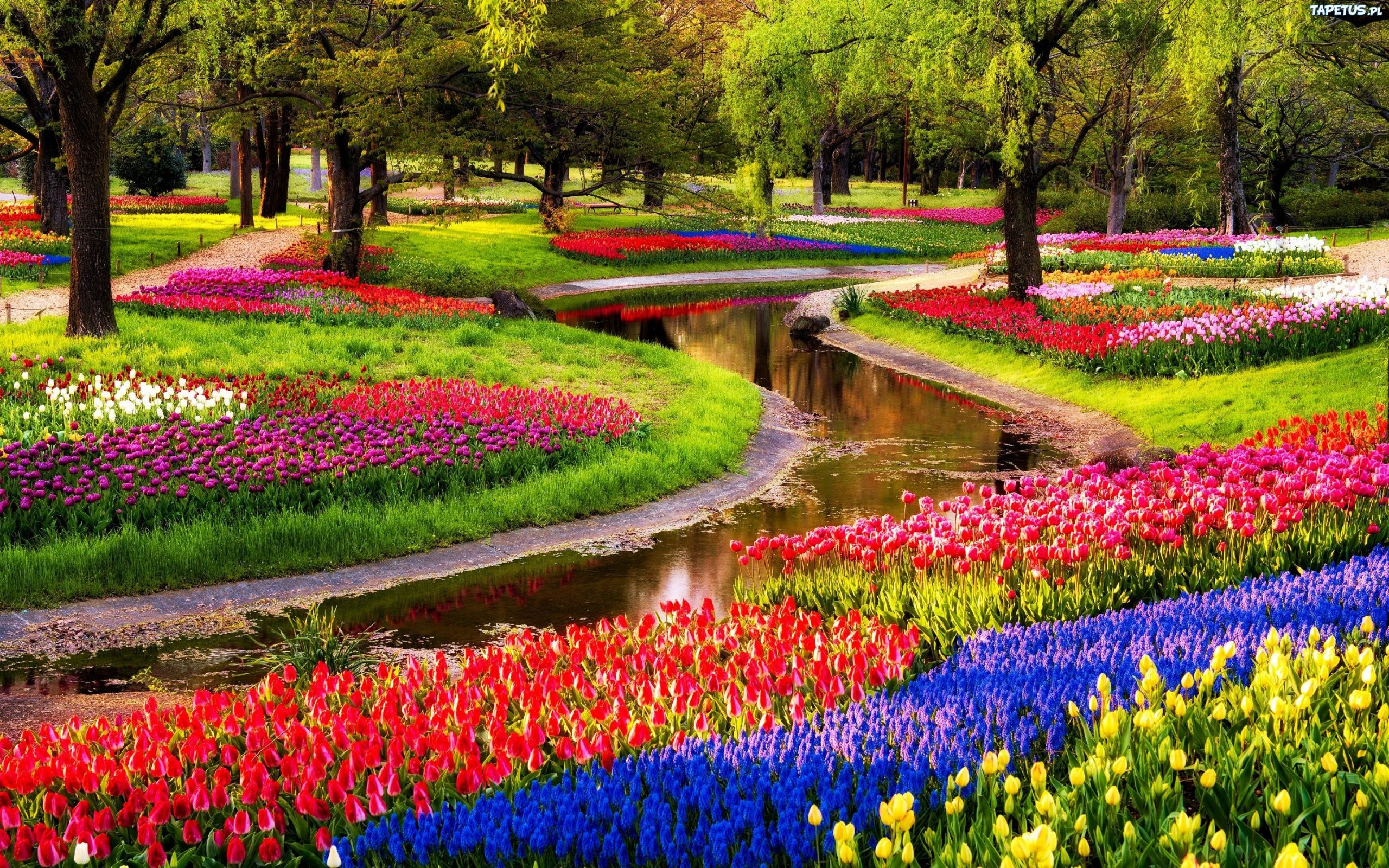 Keukenhof Gardens, Lisse, Netherlands | Jardins Bonitos ... serapportantà Jardin De Keukenhof