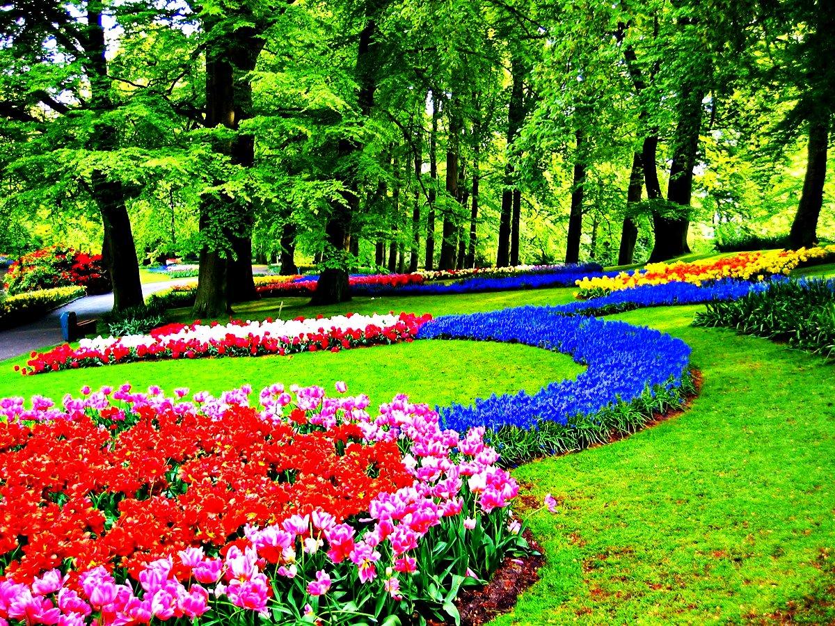 Keukenhof Parkı | Koleksiyon 'en İyi 16 Sıradışı Ve Özgün ... pour Jardin De Keukenhof