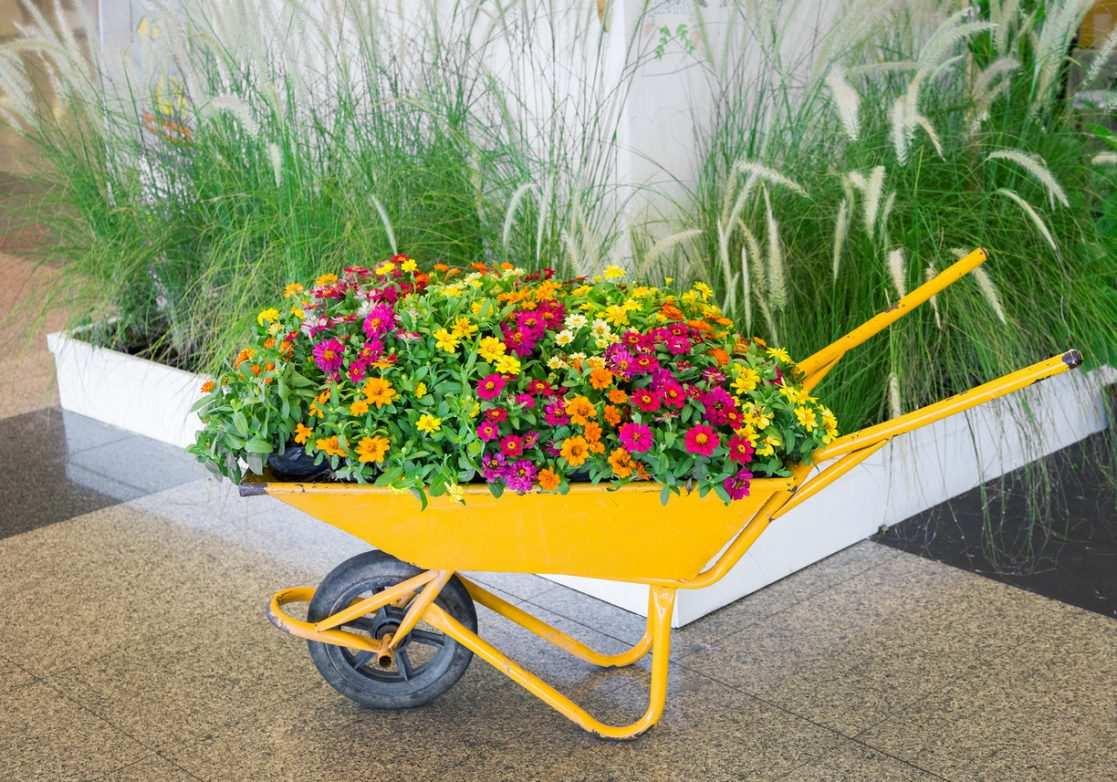 La Brouette, Utile Et Décorative - Bricofamily tout Brouette Deco Jardin