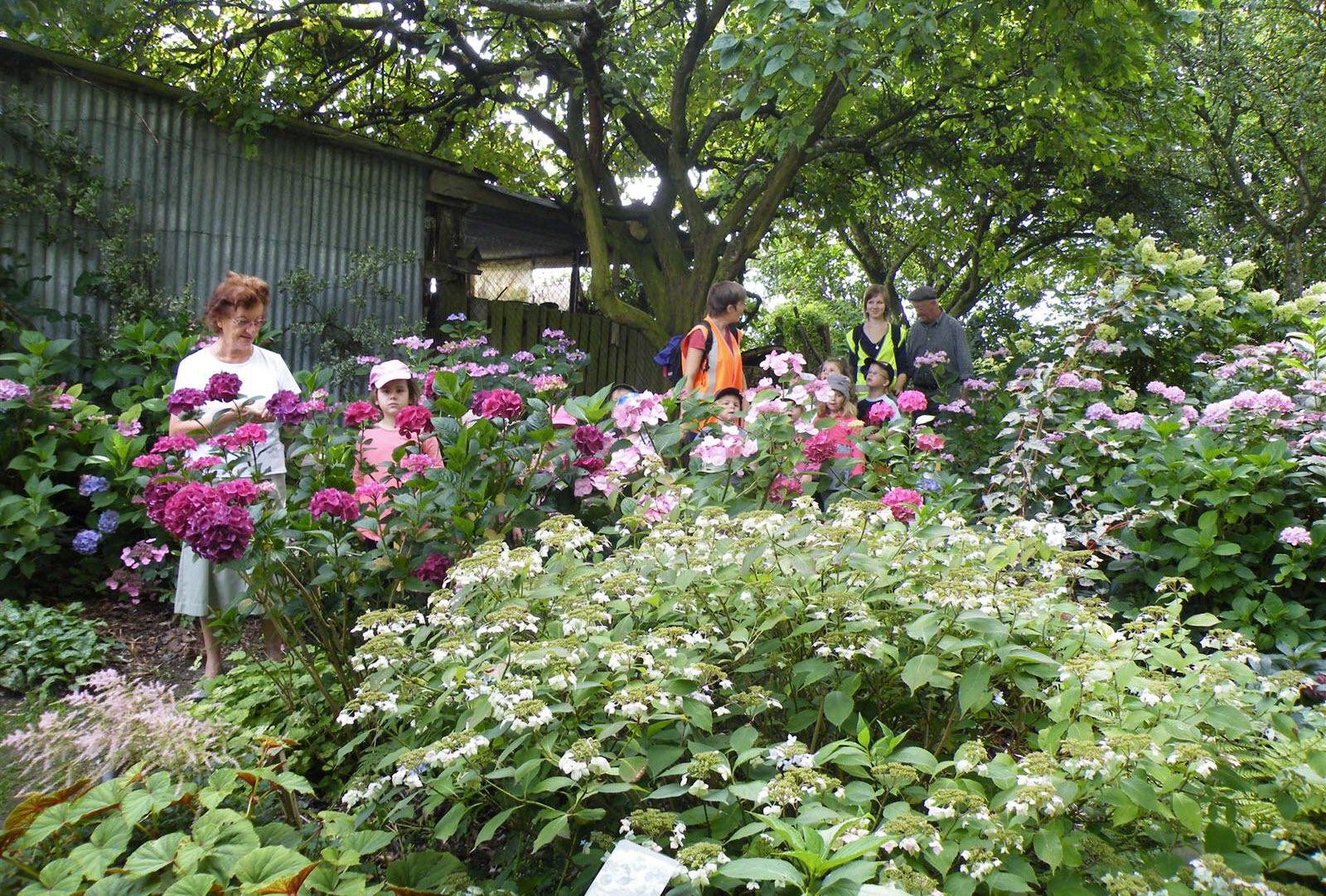 La Chaux | Le Jardin Des Sources, Un Havre De Verdure Et De Paix intérieur Chaux Jardin
