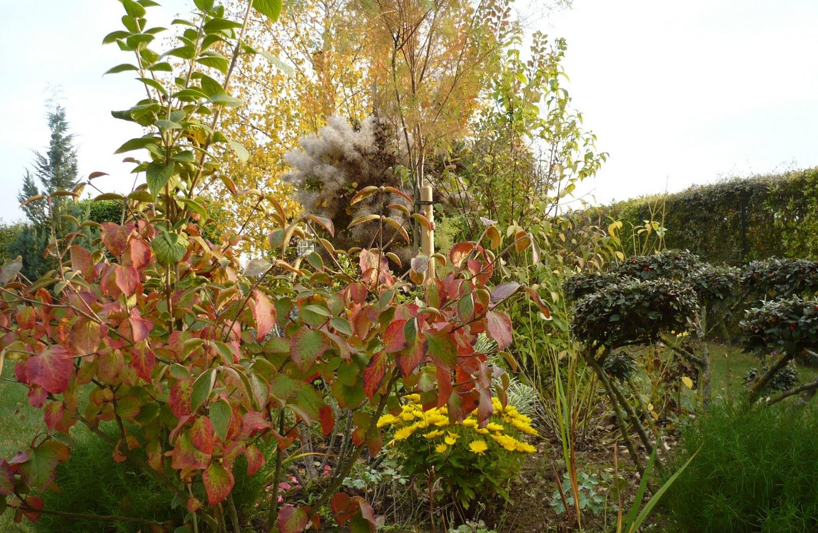 Le Jardin De Pacalou: Teintes Du Moment. pour Ecorces Jardin