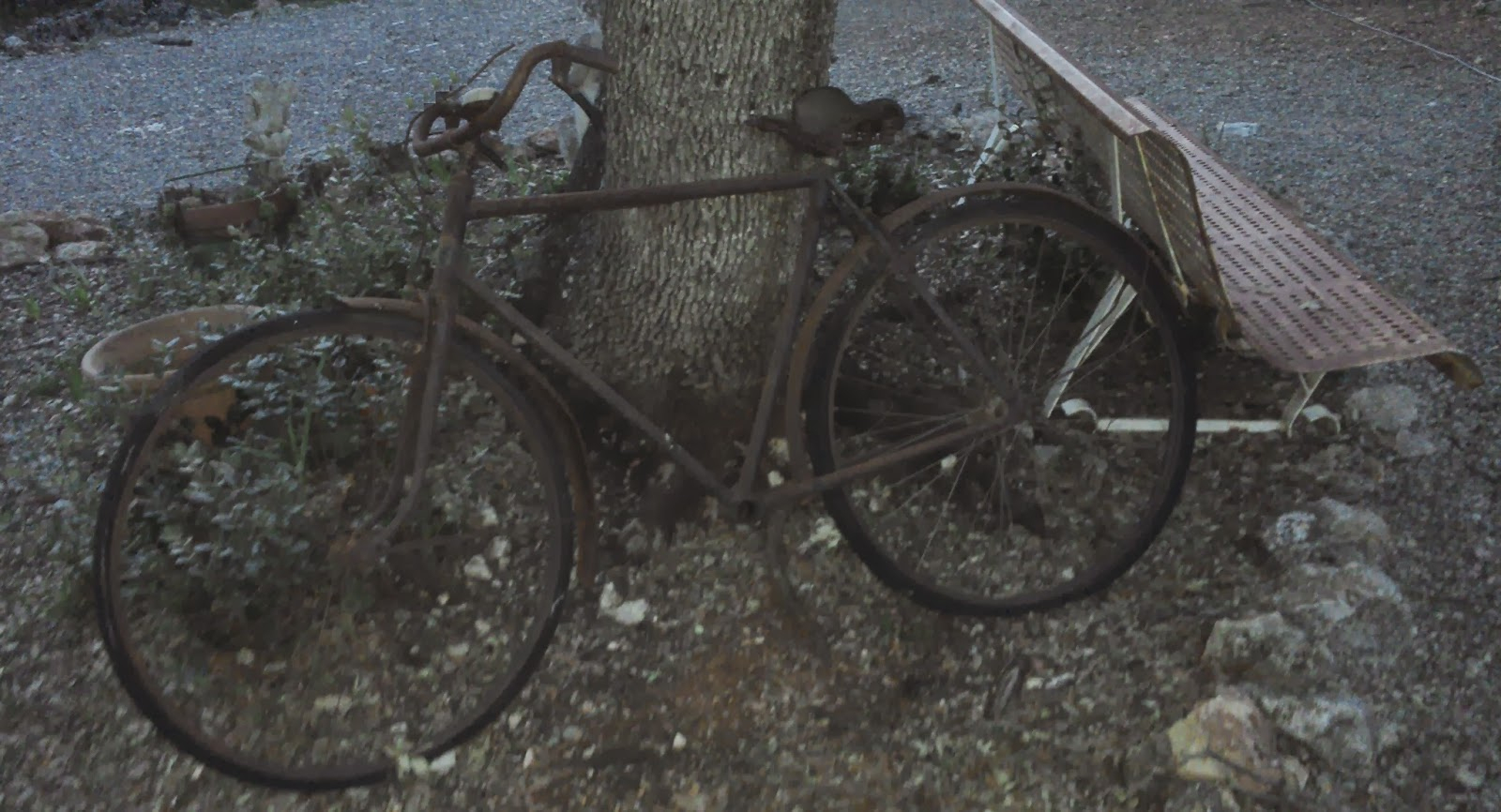 Le Vide Grenier De Didou La Brocante: Ancien Vélo Tout ... dedans Velo Deco Jardin