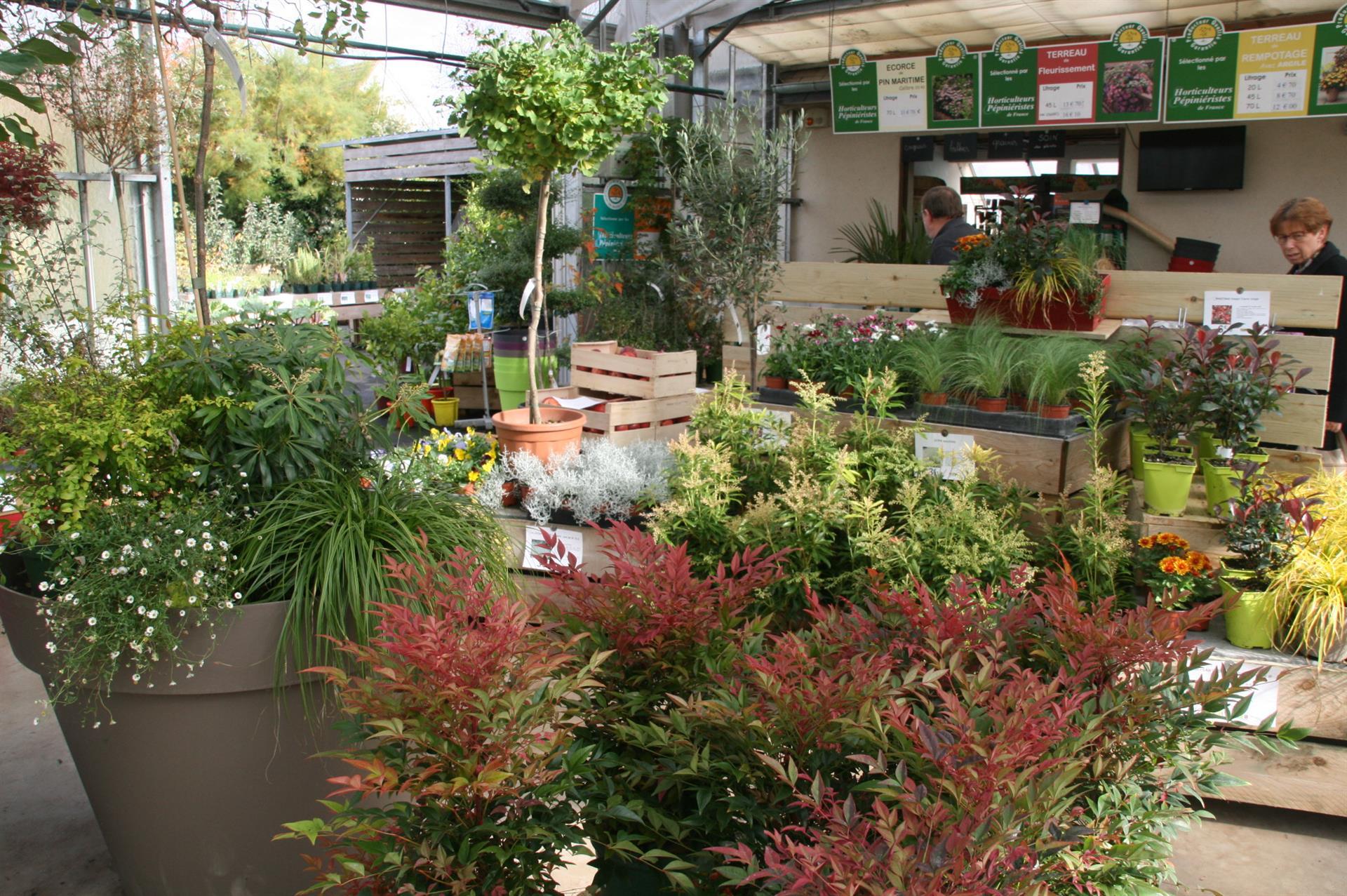 Les Automnales pour Ecorces Jardin
